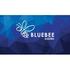 Bluebee Academic Job Openings