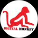 Digital Monkey Pvt Ltd Job Openings
