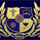 Texila Educational Management and services Pvt ltd Job Openings