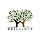 Brilliant HR Solutions Job Openings