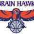 BrainHawk Consultants Job Openings