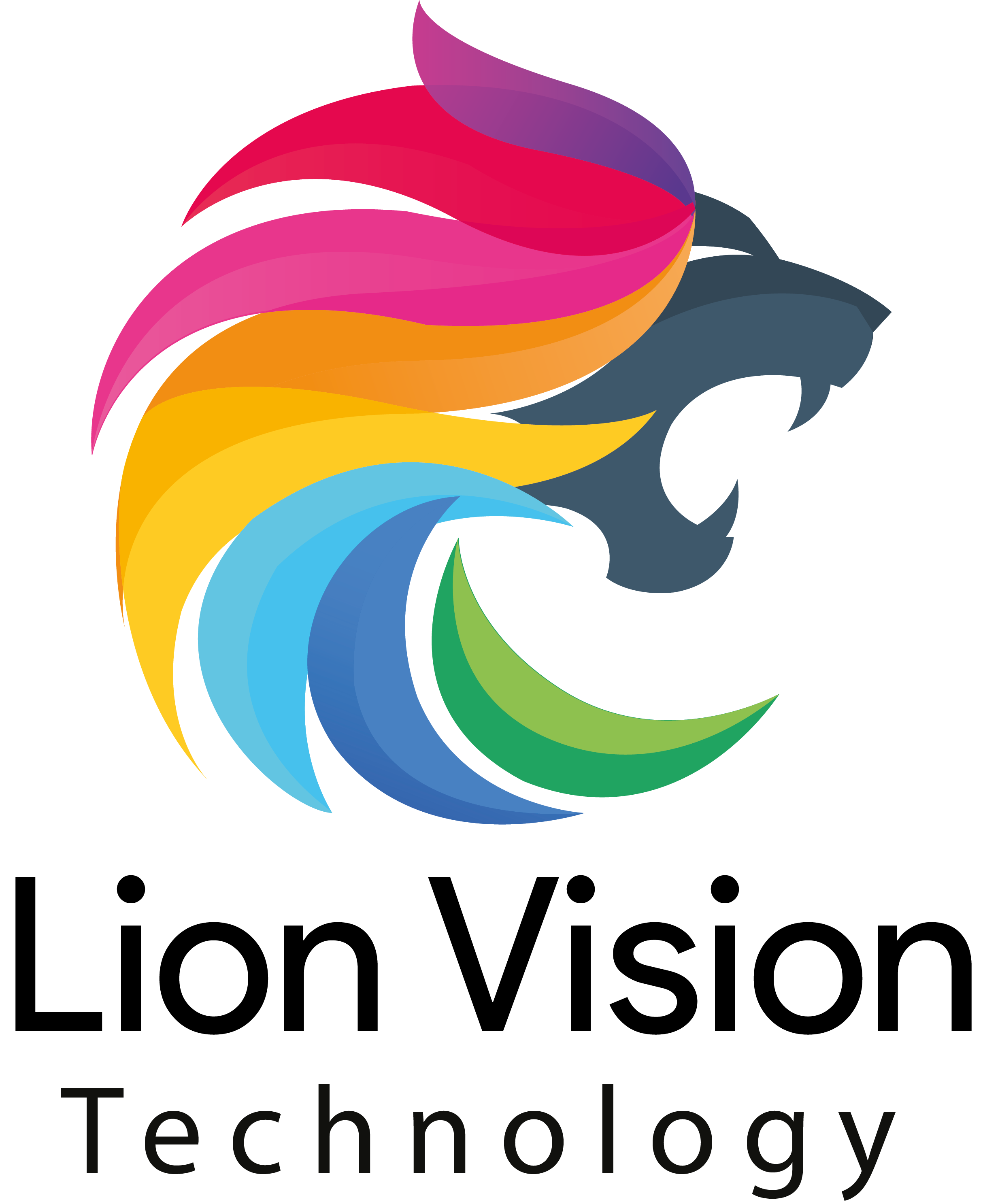 Lion Vision Info Tech Solutions Job Openings