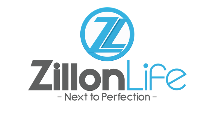 ZILLONLIFE GLOBAl PVT.LTD. Job Openings