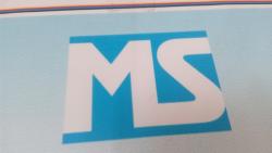 Ms management marketing pvt ltd Job Openings