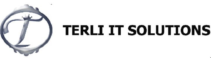 Terli it solutions Job Openings