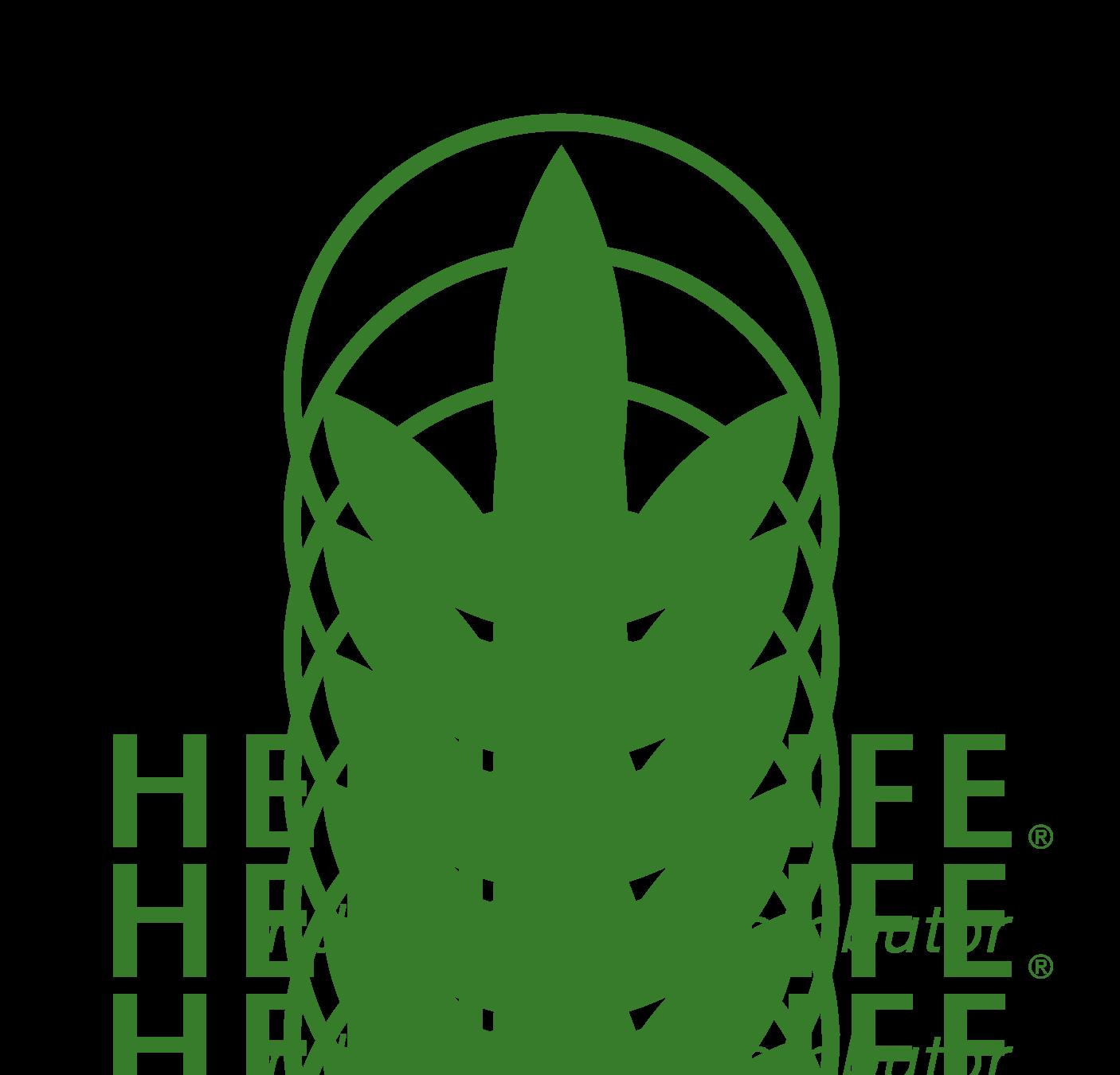Herbalife international pvt ltd Job Openings